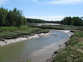 Little River (Passamaquoddy Bay) - Image: Little River in Perry, Maine, 2012