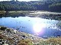 Loch Duartmore - geograph.org.uk - 66122.jpg