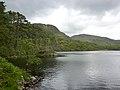 Loch Trool (6600304183).jpg