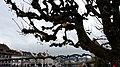 Lucerne, Switzerland (15349679833).jpg
