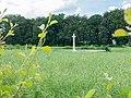Luke Copse British Cemetery-10.jpg