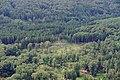 Möhnesee Arnsberger Wald FFSN-1737.jpg