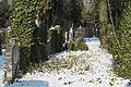 München Neuer israelitischer Friedhof 896.jpg