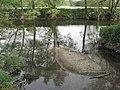 Mündung der Bibers in den Kocher bei Rosengarten-Westheim mit Sedimentinsel aus N.jpg