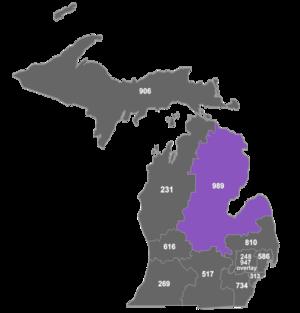 Area code 989 - Map of area code 989 in Michigan.