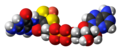 MPT-AMP anion spacefill.png