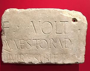 Fragment d'inscription mentionnant un questeur de la tribu Voltinia (Ra 16 a)