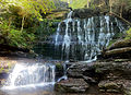 Machine falls in Coffee County, TN.jpg