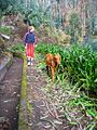 Madeira - 2005 - IMG 0913.jpg