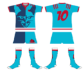 Maillot Servals RC.png