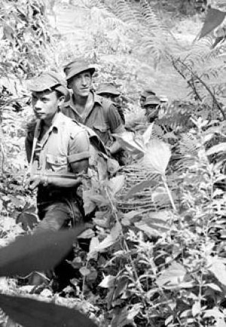 Royal Malay Regiment - Operators of the Malay Regiment during a jungle patrol in the Temenggor area of northern Malaya., c.1953