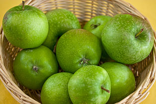 Malus Granny Smith 4546.jpg