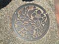 Manhole cover of Arao, Kumamoto 2.jpg
