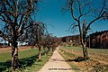 March Spring Countryside - Magic Rhine Valley Photography 1990 Landeck Town - panoramio.jpg