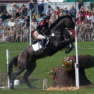 Marina Köhncke German equestrian