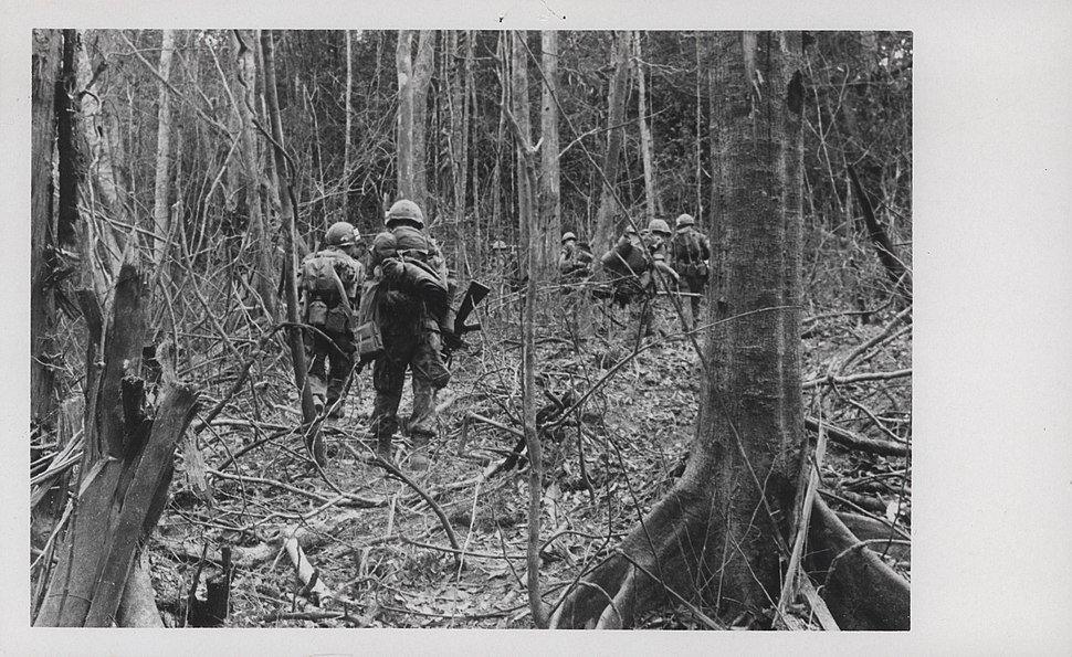 Marines of M Company, 3d Battalion, 26th Marines, 1969 (15179512062)
