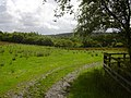 Meadow, Grane - geograph.org.uk - 1416965.jpg