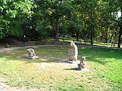 Medvědí rodina (001).jpg