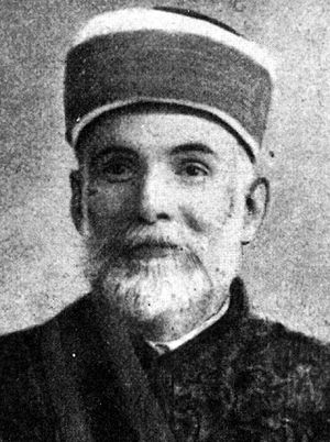 Džemaludin Čaušević - Image: Mehmed Džemaludin ef. Čaušević