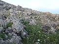 Mellieha, Malta - panoramio (128).jpg