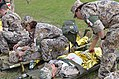 Members of the Latvian Zemessardze or National Guard 45th Logistics Battalion, remove a volunteer patient from a military ambulance.jpg