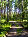 Meza taka - panoramio (2).jpg