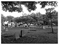 Miami City Cemetery (60) BW.jpg