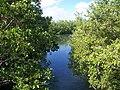 Miami FL Oleta River SP08.jpg