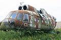Mil Mi-9 Hip-G 33 red (9555081673).jpg