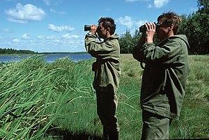 Arkharinsky District - Khingansky Nature Reserve in Arkharinsky District