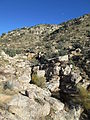 Molino Canyon From Vista Santa Catalina Mountains Arizona 2014.JPG