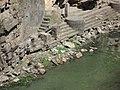 Monkeys at Pashupatinath - panoramio.jpg