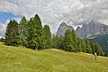 Mont de Sëuc y Saslonch cun leresc.jpg