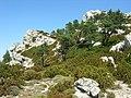Monte Caro - panoramio.jpg