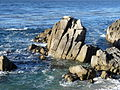Monterey Bay Seascape.jpg