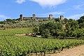 Monteriggioni, veduta delle mura 03.jpg
