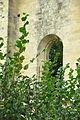 Montigny-lès-Cherlieu - Abbaye de Cherlieu 18.JPG