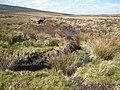 Moorland stream - geograph.org.uk - 1586846.jpg