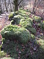 Moss covered fallen wall. - geograph.org.uk - 372014.jpg