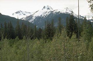 Canadian Cascade Arc