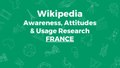 Movement Strategy - Brand awareness, attitudes, and usage survey report - France.pdf