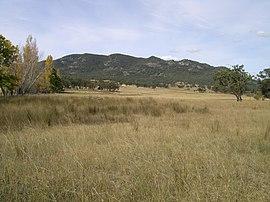 Mt Yarrowyck