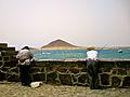 Muelle del médano.JPG