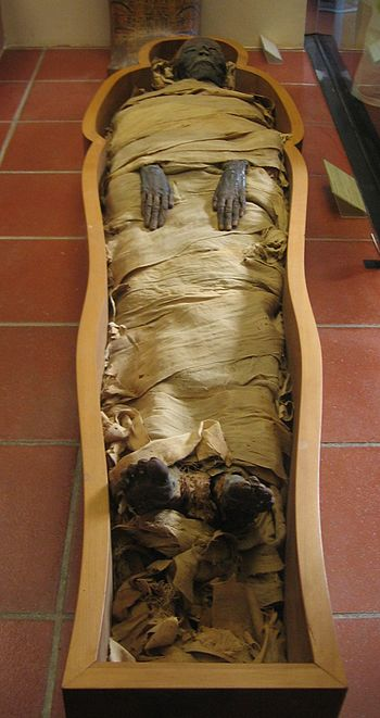 English: An Egyptian mummy kept in the Vatican...