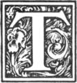 Muusmann-Matadora-T.png