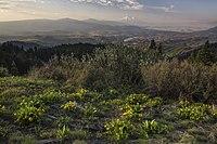 Mein öffentliches Land Roadtrip-Cascade-Siskiyou National Monument in Oregon (18908781818) .jpg