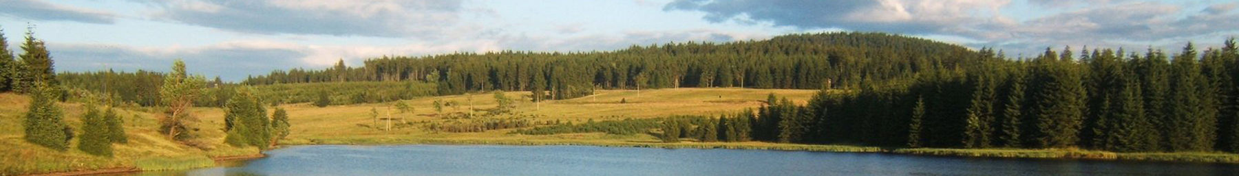 Water reservoir near Myslivny in the Ore Mountains