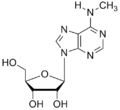 N6-methyladenosine.png