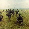NARA 111-CCV-623-CC33187 101st Airborne soldiers advancing through field Operation Van Buren 1966.jpg