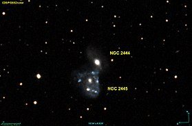 Image illustrative de l'article NGC 2444